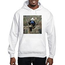 Giant Panda Hooded Sweatshirt