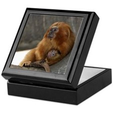 Golden Lion Tamarins Keepsake Box