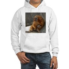 Golden Lion Tamarins Hooded Sweatshirt