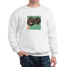 Clouded Leopard Cubs Sweatshirt