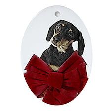 Miniature Dachshund Christmas Oval Ornament