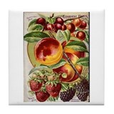 4 Farliest Fruits Tile Coaster