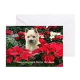 Cairn Terrier Christmas Poinsettia Greeting Cards