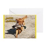 Golden Retriever Hunting Greeting Cards (Pk of 10)