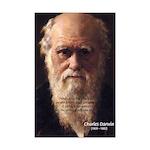 Evolution Charles Darwin: Useful Variations