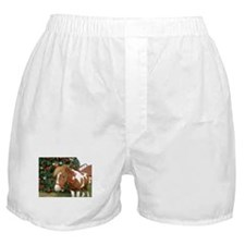 Mini Reinhorse Boxer Shorts