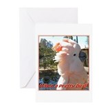 Pretty Bird Greeting Cards (Pk of 10)