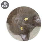 "Hi Kitty 3.5"" Button (10 pack)"