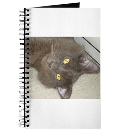 Hi Kitty Journal