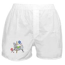 Carousel Horse Flowers Boxer Shorts