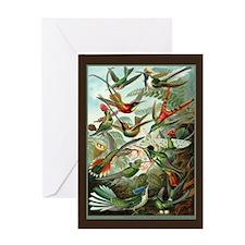 """Hummingbird Print"" Greeting Card"