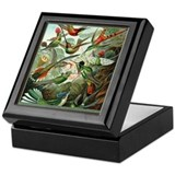 """Hummingbird Print"" Keepsake Box"