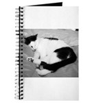 Sleepy Kitty Journal