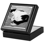 Sleepy Kitty Keepsake Box