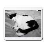 Sleepy Kitty Mousepad