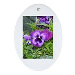 Purple Pansy Oval Ornament