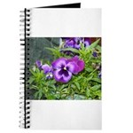 Purple Pansy Journal