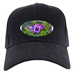 Purple Pansy Black Cap