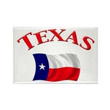 Texas State Flag Rectangle Magnet (10 pack)