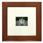 Hyacinth Framed Tile