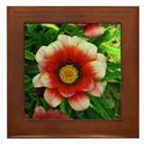 Blushing Flower Framed Tile