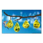 Comfort Zone Rectangle Sticker 10 pk)