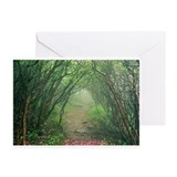 Misty Trail Greeting Cards (Pk of 10)