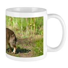 Desert cottontail Mug