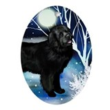 Newfoundland Winter Night Oval Ornament