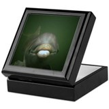 Baby Dolphin Kissing Keepsake Box