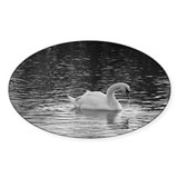 Black and White Swan Seven Oval Decal
