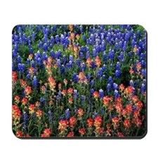 BLUEBONNETS AND PAINTBRUSH Mousepad