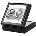 Norwich Cropper Pigeons Keepsake Box