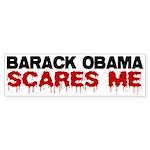 Anti Obama Bumper Sticker (10 pk)