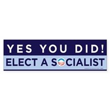 Yes You Did! Bumper Sticker (50 pk)