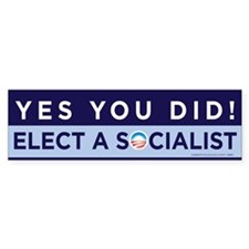 Yes You Did! Bumper Sticker (10 pk)