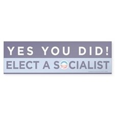 Yes You Did! Bumper Bumper Sticker