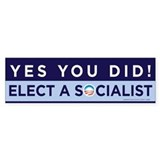 Yes You Did! Bumper Car Sticker