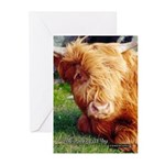 Here's Looking At You Greeting Cards (Pk of 10)
