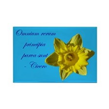 Small Beginnings Daffodil Magnet (10 pack)