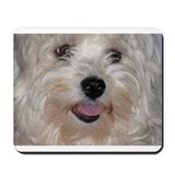 Funny Havanese Mousepad