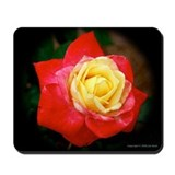 Love and Kisses Rose Mousepad
