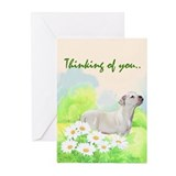 American bulldog Sympathy Greeting Cards (Pk of 20