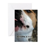 Hello Greeting Cards (Pk of 10)
