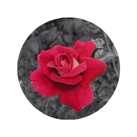 "Black White Red Rose 3.5"" Button"