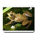 Green Frog Mousepad