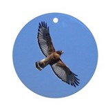 Red-shouldered Hawk Ornament (Round)