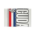 hemi RWBB Rectangle Magnet (100 pack)