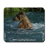 Wet Bear Mousepad