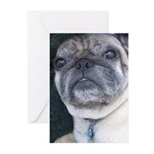 Pug Valentine's Greeting Cards (Pk of 10)